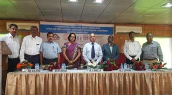 BIS-ICAI seminar on various power sector segments