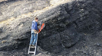 Coal import from Canada may rise