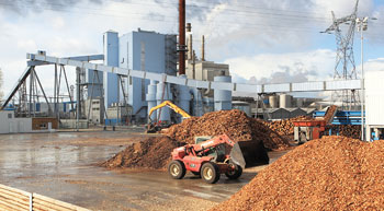 CSPDCL to buy 50-MW biomass generated power